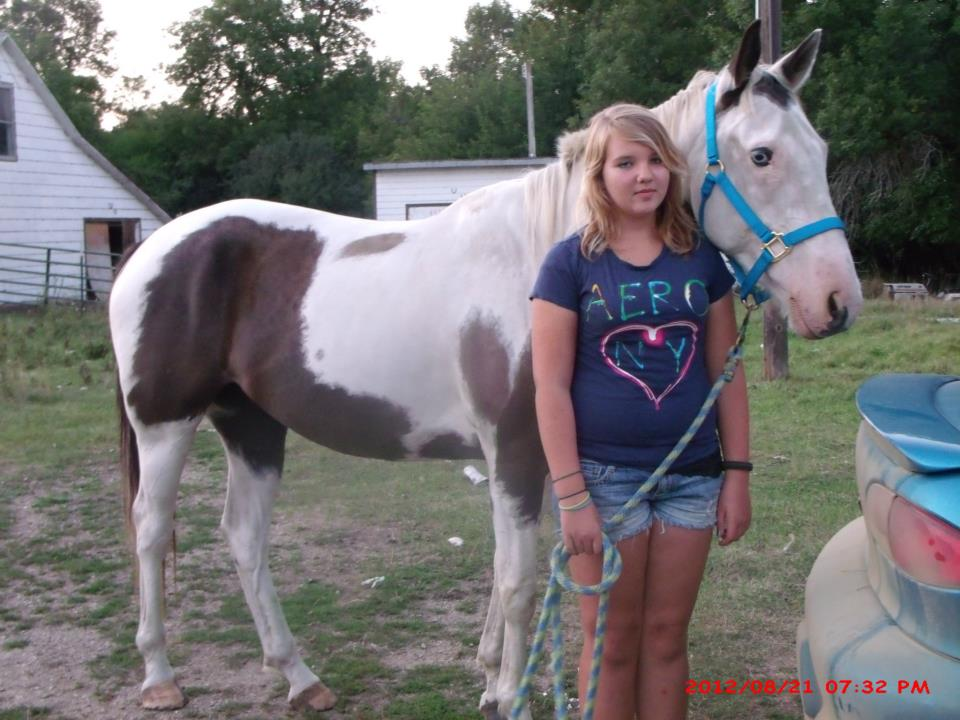 Paint Horse Photos